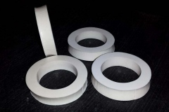 Silicon Seals
